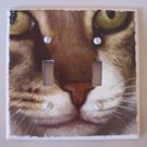 Double LIGHTSWITCH PLATE COVER Cat Face Handmade in the USA