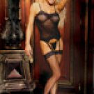 Three piece set. Fishnet camisette, g-string and stockings........QUEEN SIZE