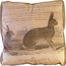 Hare Accent Box Pillow
