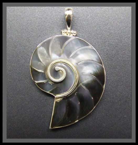 Silver Pendant and Shell - Nautilus Design