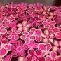 Pink Brown Flowers Ultra Cuddle Minky Tie Blanket
