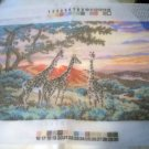 Dimensions Needlepoint Printed Color Design Canvas (1997) - Sand River Sunrise 2456