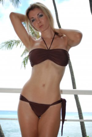 &acirc;&iexcl;&acirc;&yen;M *HOT Brazilian Cut Bikini SET*  Brown Bandeau Swimsuit Swimwear NWT Medium&acirc;&yen;&acirc;&iexcl;