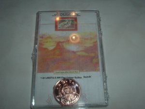 .999 One OZ. fine copper Lakota Coin