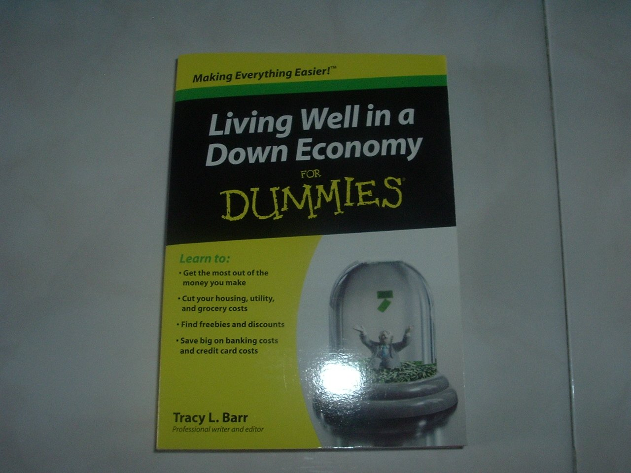 Living Well in a Down Economy for Dummies - Soft Cover