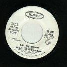 R.E.O. Speedwagon - Lay Me Down - EPIC 10892 PROMO 45 rpm Record