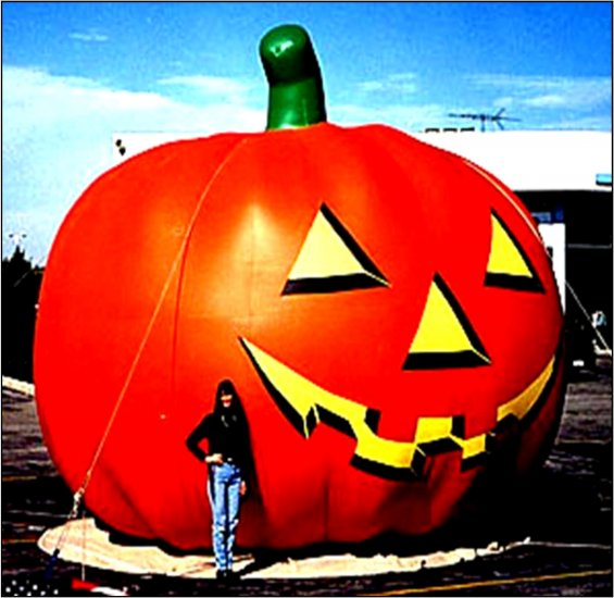 JACK O LANTERN PUMPKINS PATCHES HALLOWEEN HAUNTED SCARE ATTRACTIONS GHOSTS FALL FESTIVALS CORN MAZES