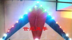 Luminous Kite,Big,Shining,Easy to fly,Llook like UFO