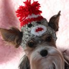 Sock Monkey Dog Hat