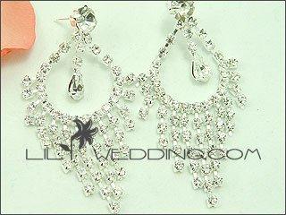 Decorated Hoops Rhinestone Earrings