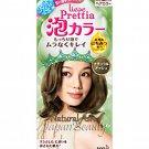 Kao Prettia Soft Bubble Hair Color Natural Ash