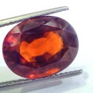 Huge 13.87 Ct Untreated Premium Natural Ceylon Gomedh/Hessonite