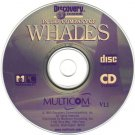 Discovery Channel: In the Company of Whales CD-ROM for Windows -NEW CD in SLEEVE