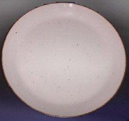 """J & G Meakin lifeStyle 10"""" Dinner Plate Set of 2"""