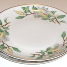 Treasure (WHITE MAGNOLIAS) by Contour China Bread and Butter Plates - Set of 2