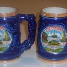 Vintage Souvenir Pittsburgh Lusterware Mug Stein - MIJ Set of 2
