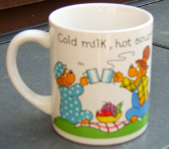 Vintage Princess House 1987 The Berenstain Bears Coffee Mug