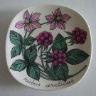 Botanical Miniature Plate Arabia of Finland - Rubus Arcticus