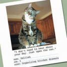 """PPD Paper Napkins Delilah """"I don't need to hear about your day"""" - 5401"""