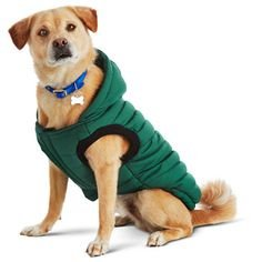 NWT Petco Good2Go Green Quilted / Blue Fleece Dog Parka, XL 2421933