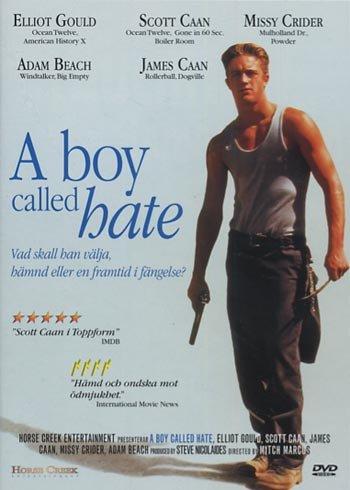 A boy called hate (1995, James Caan) NEW R2 DVD