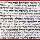 "5*kosher 2.75""  klaf/scroll/parchment for mezuzah mezuza"