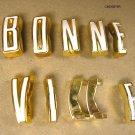 1961 Pontiac Bonneville fender / door letter set