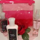 BATH & BODY WORKS BLACK AMETHYST 3 PC MINI TRAVEL BATH SET