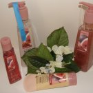 BATH & BODY WORKS BROWN SUGAR & FIG 4 PC TRAVEL HAND CARE SET