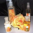 BATH & BODY WORKS WILD HONEYSUCKLE 4 PC TRAVEL BATH & HAND ANTI-BAC SET