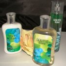 B & BW EUCALYPTUS SPEARMINT 3 PC BATH AND BODY SET