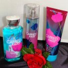 BATH & BODY WORKS CARRIED AWAY 3 PC BATH SET