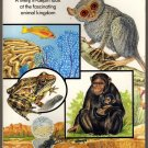 Animals Simon & Schuster Picture Pocket Book soft cover