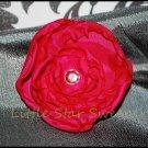 Azalea Singed Flower