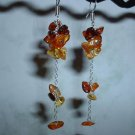 AMBER CLUSTER Sterling Silver Earrings 475