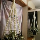 Macrame Plant Hanger IVORY 4 GREEN BEADS