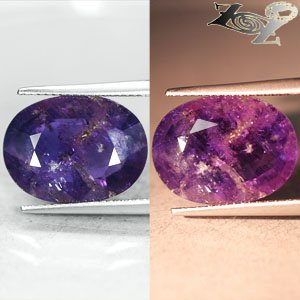 12.1 Ct.Unheated Natural Oval 12.5*17 Vivid Violet Purple Color Change Sapphire