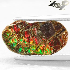 2.78 CT.Natural iridescence Extreme Play Green Red Color Dragon Skin Ammolite