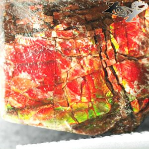 4.64CT.Natural Iridescence Play Red Color Whole Dragon Skin Canada Ammolite Slab
