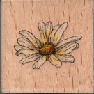 LAZY DAISY RUBBER STAMP