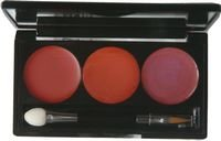 Lady In Red Lip Pallete
