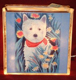 West Highland White Terrier 8x8 Glass Block