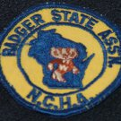 Vintage Badger State Association NCHA Badge Patch - Wisconsin