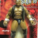 the rock summerslam 1999  exclusive toy