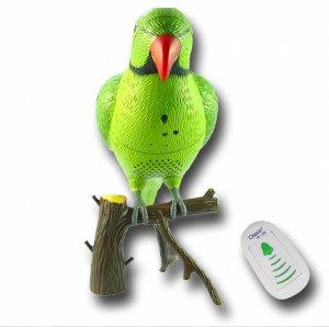 Recordable Parrot Wireless Doorbell  [TKE-CVESA-RD388]