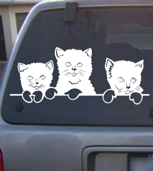 Vinyl Decal Cat25
