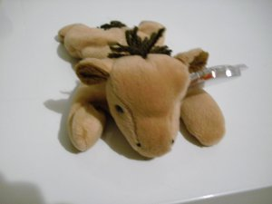 "Original TY Beanie Baby - ""Derby"" - September 16, 1995"