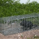 "Animal Trap Collapsible Small 16"" x 5"" x 5"""