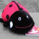 Maiden the Ladybug mini Ty Beanie Baby from 2009