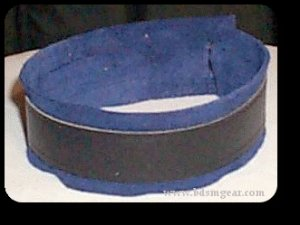 Deluxe Blue Lined Ringless Collar